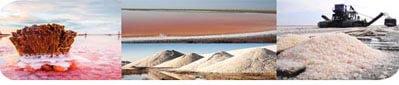Соляные бани , соляные блоки кирпичи плитка